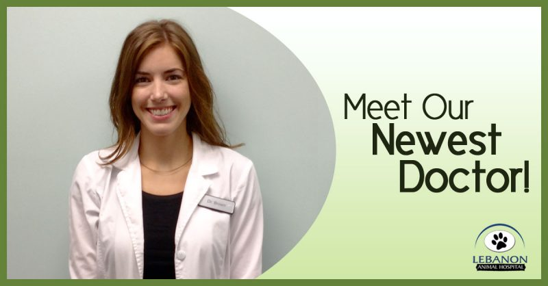 Meet Our Doctor banner