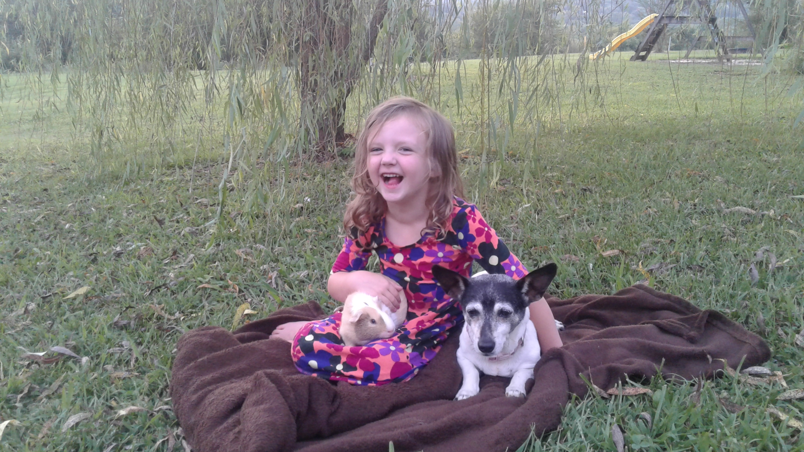 cute girl sitting in the playground , playing with the dog and a rabbit.