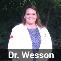 Dr-Wesson